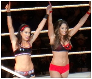 The Bella Twins in Las Vegas on 16 February 2014